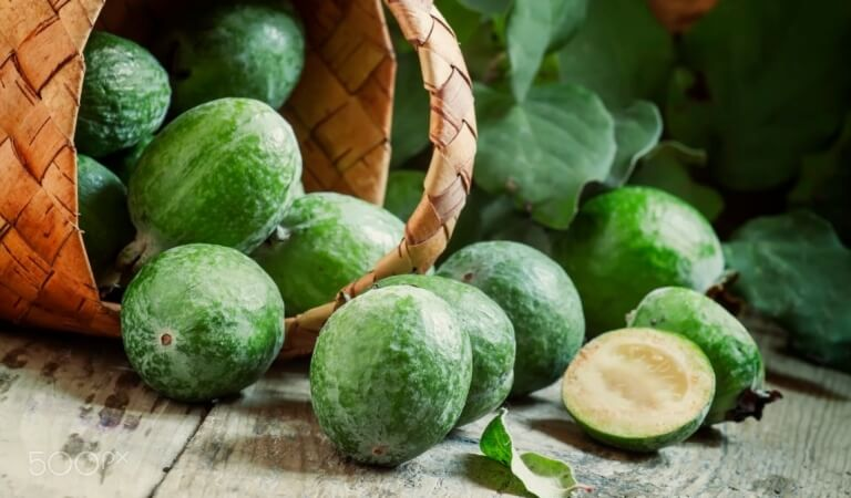 Feijoa – the composition, the benefits and how to eat