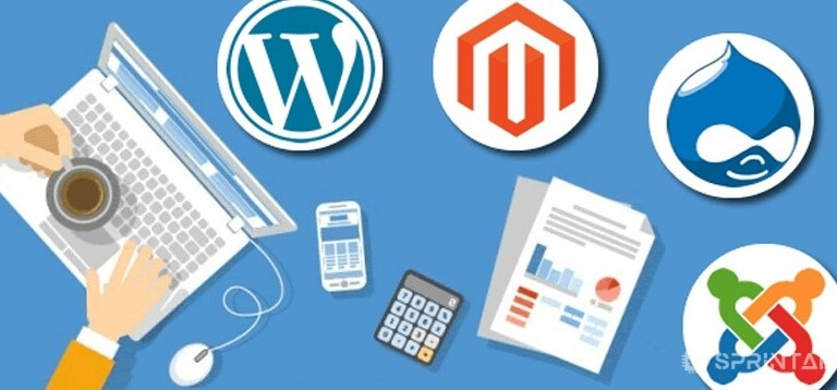 10 Best CMS you can try for your website