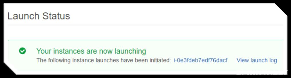 Launch Status