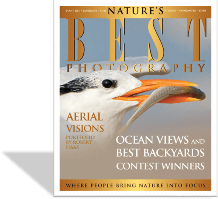 Nature's Best Photography