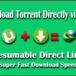 torrent url to direct url