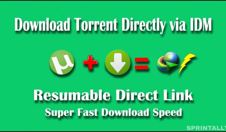 How to convert a torrent download to direct URL download?