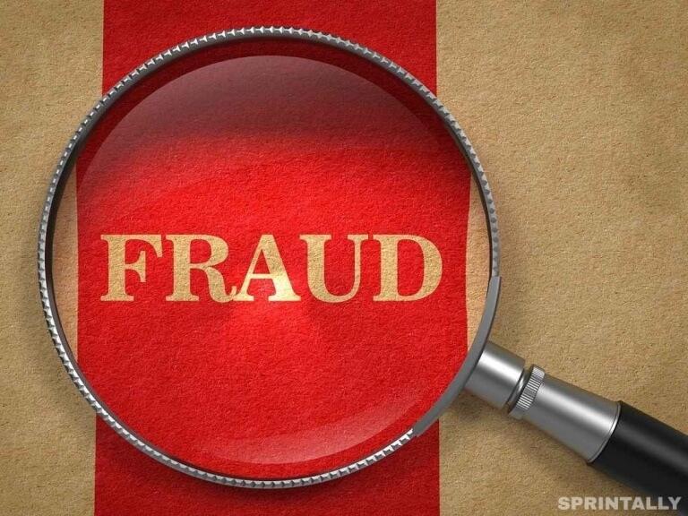 Fraud Company