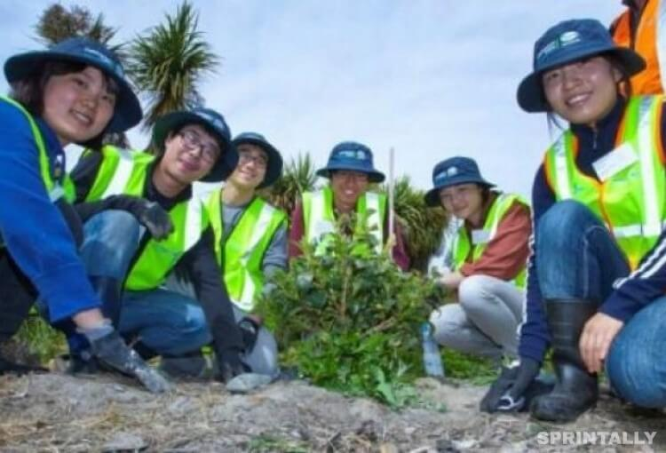 Conservation Volunteers