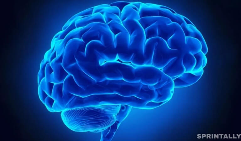 7 reasons why not to trust your brain
