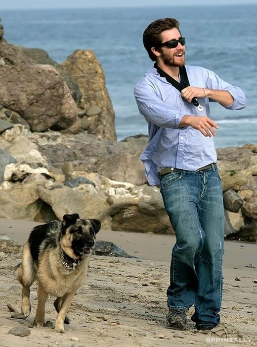 Jake Gyllenhaal and Atticus