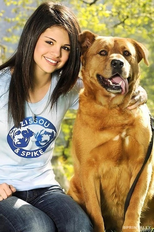 Selena Gomez and her 6 dogs 3
