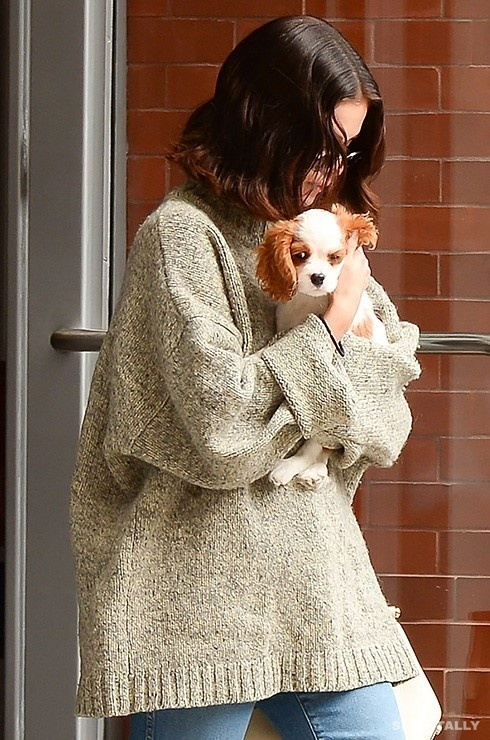 Selena Gomez and her 6 dogs 4