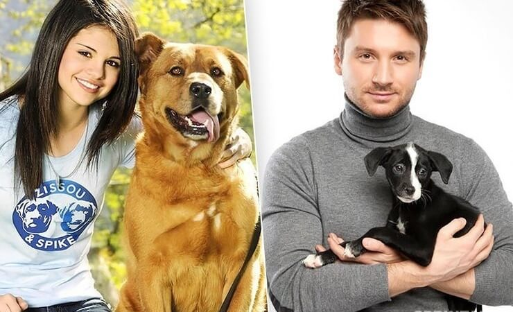 Stars that took dogs from the shelter: 7 stories that will melt your heart