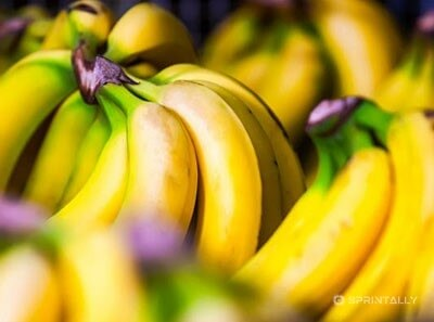 Useful Properties Of Banana