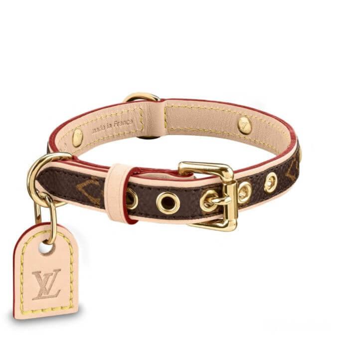 Dog Collar Louis Vuitton