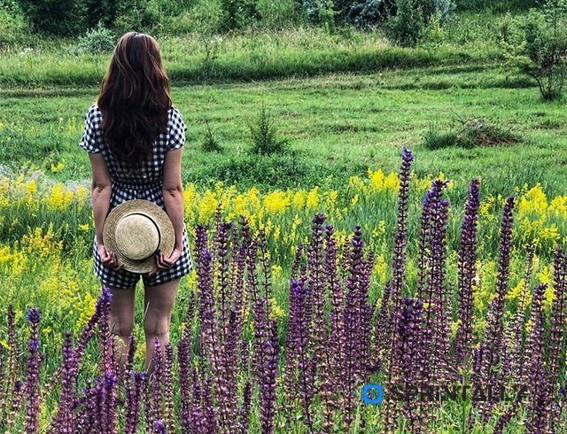 Mocha hair color