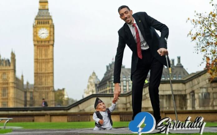 The tallest people in the world: Top 10