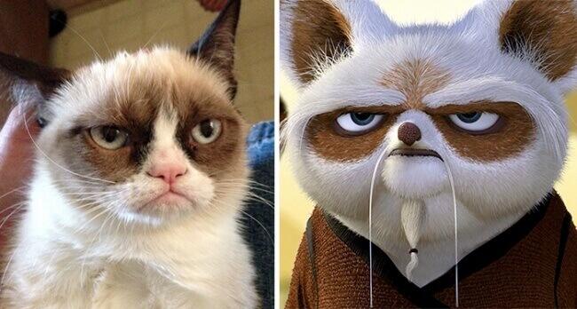 Grumpy Cat And Master Shifu From Kung Fu Panda