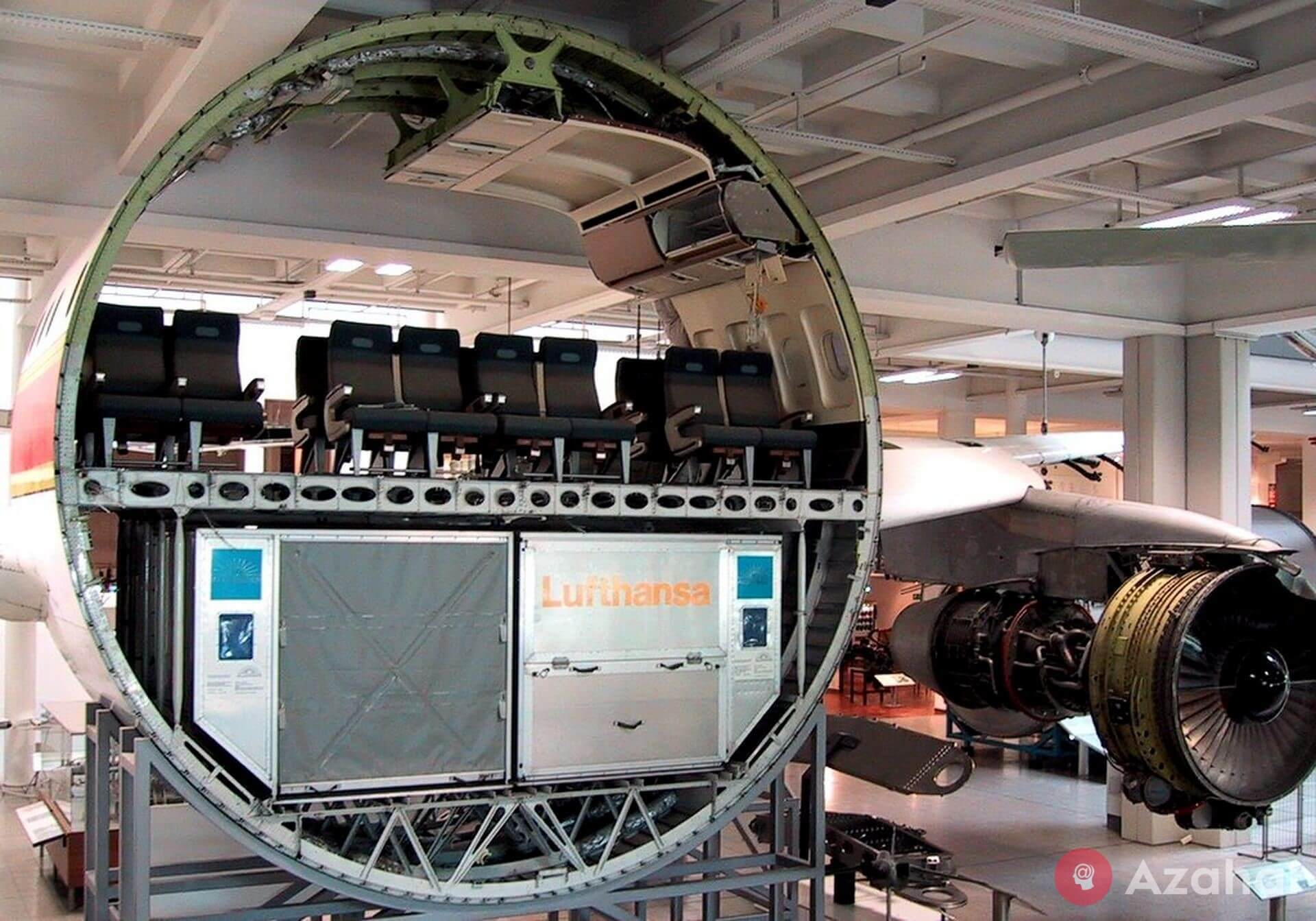 Passenger Plane In Section