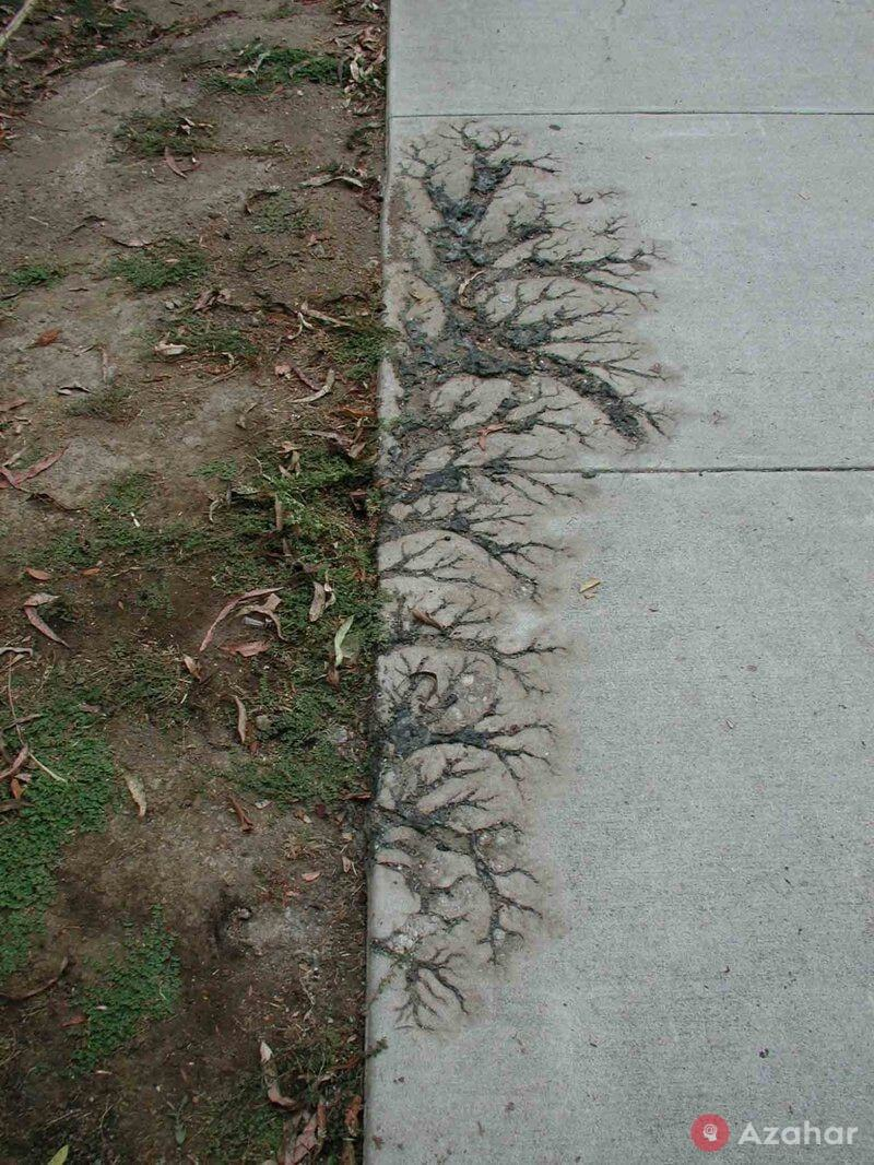 Such A Trace Is Left By Lightning Striking The Ground
