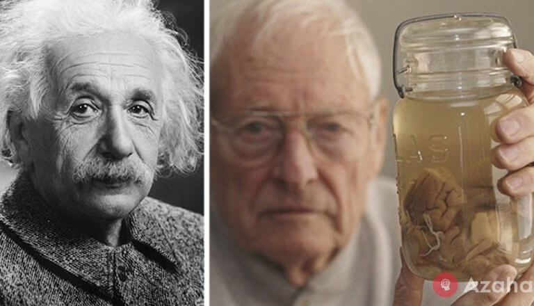 An amazing story about how he stole Einstein's brain and what happened next