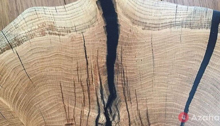 The paradox of stained wood: why it does not rot in water and may remain for 500 years