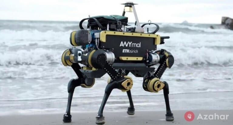 Swiss Robot
