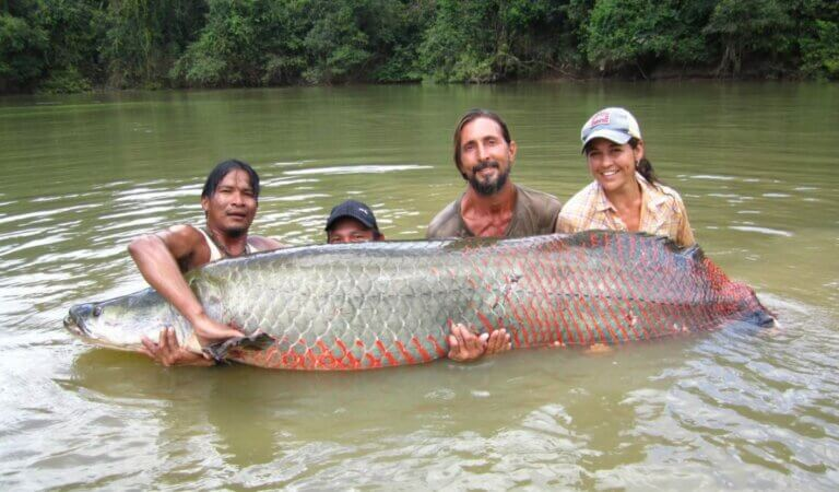 Top 10 largest freshwater fish in the world