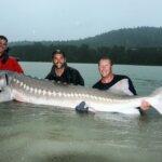 Biggest Fish