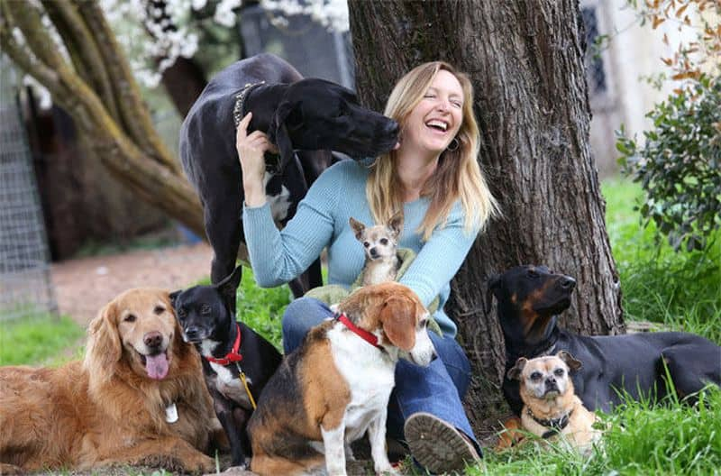 Dog Lovers Are Cheerful And Friendly